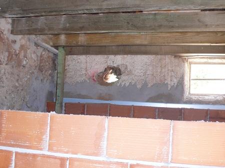 insulating walls