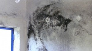 damp rooms portugal