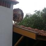 Portugal's coastal climate, casteloconstruction, dampfix portugal,