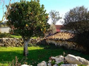 shade, gardenshade, dampfixpt, dining in the garden,castelo construction